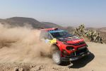 WRC RALLYES -MEXICO RALLY 2019 shakedown photos by Willy WEYENS on AutoMobilSport.com