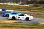 TRANS AM ROAD ATLANTA 2019 Friday photos copyright Haley TIBBETT on AutoMobilSport.com