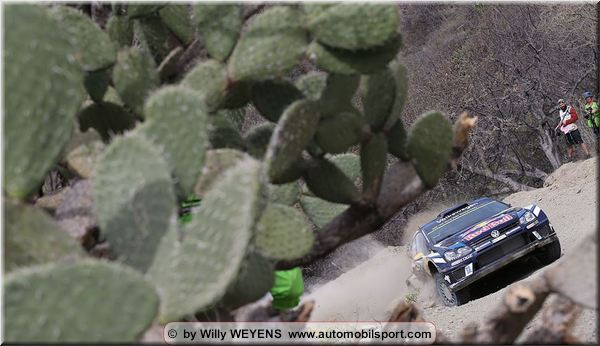 Driver quotes and notes from Mexico Rally stage 8