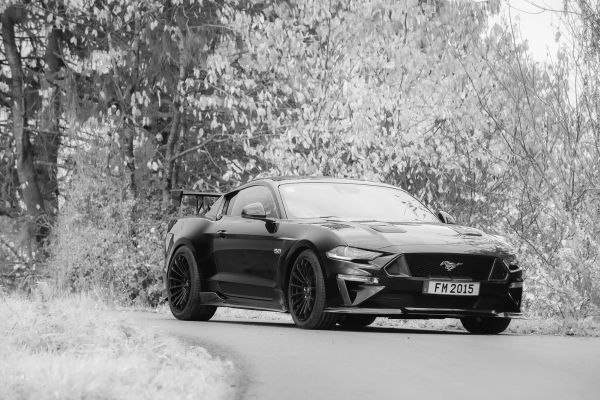 The Abbes Design Mustang offers 500hp