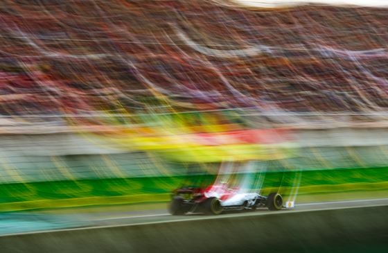 DPPI Photo Of The Week #48