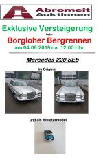Hill Climb Osnabrück - Auction of historic vehicles for the first time