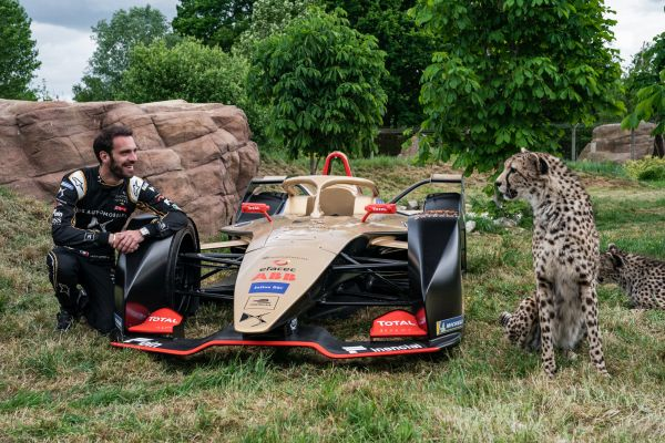 DS TECHEETAH drivers come face to face with the Cheetahs their DS E-Tense FE19 race cars are named after