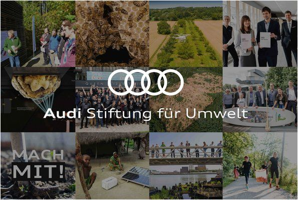 Ten years of the Audi Environmental Foundation