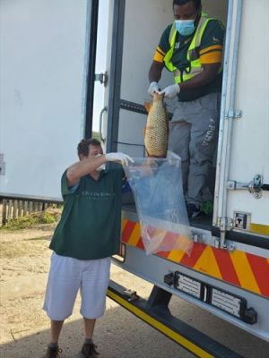 Knysna partners carp(e) diem through innovative hunger relief project